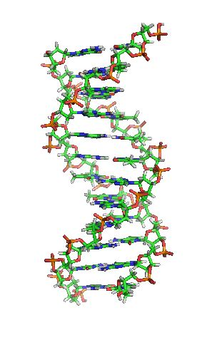 Dna Fingerprinting Is 100 Percent Accurate Law General Essay